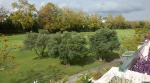 3 bedroom Penthouse for sale in Guadalmina Alta