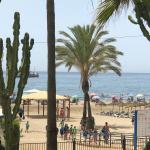 Commercial for rent in Marbella